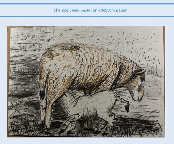 Stefan513593 - project 5 - exercise 1 - sheep study #2