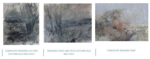 Nicholas Herbert - Serie Chiltern Hills - 2013/4