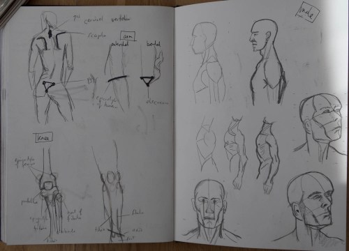 Stefan513593_project4_sketchbook-10