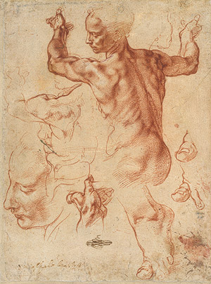 Michelangelo Buonarroti - 'Studies for the Libyan Sibyl (recto) ', 1508–12