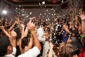 WEDDING 663