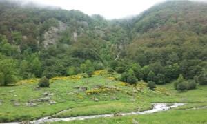 Réserve Naturelle d'Orlu - Ascou - Ax-les-Thermes