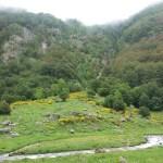 La réserve nationale d'Orlu