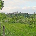 Puycelsi et la forêt de Grésigne