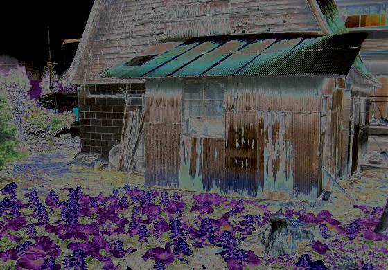 【洒落怖】ヒサルキ伝説②【小屋の2階で…】 – 2ch死ぬ程洒落にならない怖い話を集めてみない?