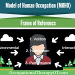 Model of Human Occupation (MOHO)
