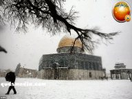 Jan 11, 2012 Snow in Palestine - Snow in Jerusalem Photo via QudsMedia