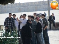Febr 7 2013 Settlers and armed forces desecrate al-Aqsa Mosque - Photo by QudsMedia 20