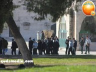 Febr 7 2013 Settlers and armed forces desecrate al-Aqsa Mosque - Photo by QudsMedia 41