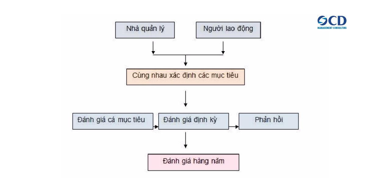 Ví dụ mô hình MBO trong doanh nghiệp