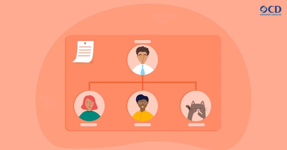 Khóa học Xây dựng cơ cấu tổ chức hiệu quả
