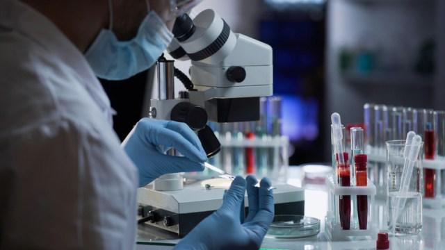 """Zachodnie wywiady, w tym brytyjski, początkowo uważały, że istnieje jedynie """"nikłe"""" prawdopodobieństwo, iż doszło do ucieczki koronawirusa z laboratorium, w którym prowadzone są badania nad koronawirusami pochodzącymi od nietoperzy, w tym - nad jednym ściśle związanym z COVID-19. Teraz jednak dokonano ponownej oceny, a wyciek z laboratorium uważa się obecnie za """"możliwy"""" - ujawniły źródła, na które powołuje się """"The Sunday Times""""."""