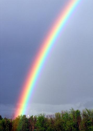 rainbow-too.jpg