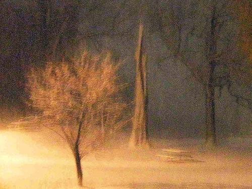 magickal-winter-night.jpg