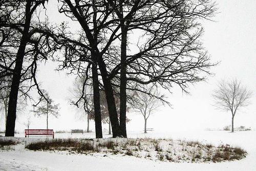 red-bench-at-winter.jpg