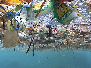 Anthropogenic marine debris (Source: http://www.oprah.com/world/Ocean-Pollution-Fabien-Cousteaus-Warning-to-the-World/1)