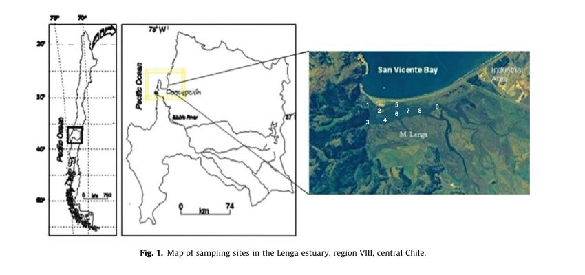 Pozo et al. - Lenga Estuary POPs sampling site