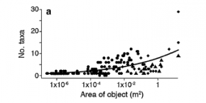 Fig 6: Number of taxa documented based on the size of the debris. As the size of the debris increases the number of taxa present also increases.