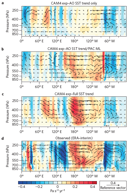 Figure 2. Global Walker Circulation 1992 - 2011. Hot colors represent rising air, cool colors represent sinking air.  CAM4 experiment forced with Atlantic Ocean sea surface temperature (a,b).  CAM4 experiment forced with global sea surface temperature trends (c.).  Observed vertical velocity (d).