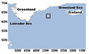 Figure 1. The site used in this study is in the black box located in the North Atlantic. Satellites monitored the bloom over time and satellite data (along with field measurements) showed that the study area was relatively calm with little mixing and transport.