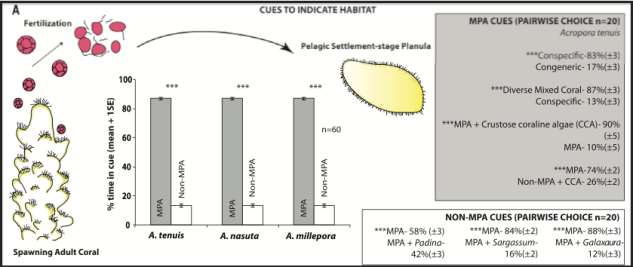 fig1a
