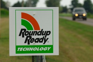 """Roundup Ready technology"" is a form of herbicide-resistant crop developed by Monsanto (MonsantoBlog.com)"