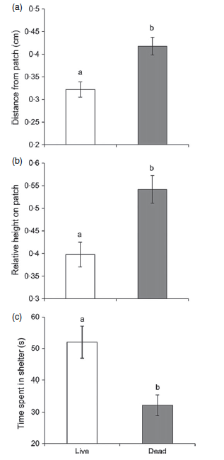 Figure 1 shows the behavioral differences exhibited by damselfish released on live coral (white bar, left) and those released on dead coral (gray bar, right). Clearly, damselfish on live coral stayed closer to the coral patch, lower to the bottom of the coral, and spent more time in shelter than those on dead coral.