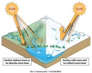 Cartoon illustrating that dark surfaces (oceans and forests) will absorb more solar energy than they reflect, and that bright surfaces (ice) reflect more solar energy than they absorb.  (http://www.sciencebuzz.org/sites/default/files/images/ill_maps-Albedo-Effect.jpg)