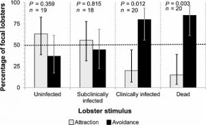 Lobster results