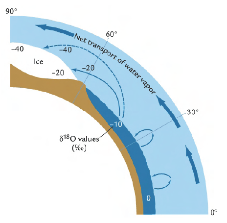 Figure 1. Latitudinal gradient in δ18O  The light isotope 16O is preferentially evaporated and the heavy isotope 18O is preferentially precipitated out of the atmosphere.  With net transport of water vapor away from the equator and towards the poles, the δ18O of seawater becomes more and more negative towards the poles.