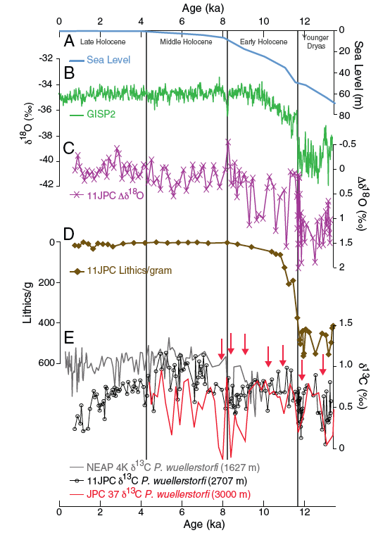 Figure 2. Proxy records. A. Global sea level rise after the last glacial period.  Note the 30 meters of rise during the early Holocene (11.7 – 8.2 ka) representing the collapse of northern hemisphere ice sheets.  B. GISP2 ice core δ18O values.  Note there is an inverse relationship between δ18O of ice cores and δ18O of seawater (derived from foram shells).  C. δ18O values from planktonic (surface water) forams.  Generally δ18O decreases (note inverted y-scale) through the early Holocene, suggesting decreasing ice sheet volume and increasing surface water temperatures, with large abrupt variability.  D. Fraction of lithics shows a steady decrease from high values (note y-scale) during the early Holocene, representing reduction in freshwater input to the North Atlantic.  E. δ13C values from benthic (deep water) forams.  Red arrows indicate increased southern source water, which implies reduced northern deep water formation resulting from more freshwater input to the surface waters.  Variability in deep water formation can be observed through the early Holocene.