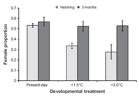 Figure 3. Proportion of female offspring produced when development occurred at various temperatures from hatching or 3-months post hatching (Donelson and Munday 2015).