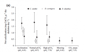 Fig. 6: This figure shows net calcification rates for the 3 species of coral at the 3 treatment levels within lab. Different symbols represent different species (see above). This figure also show the net calcification of D. dianthus in the two field sites.