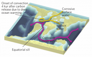 Figure 1: Spread of corrosive bottom water from the North Atlantic and subsequent dissolution of seafloor carbonate. Schematic diagram illustrating the circulation patterns described in the text. Surface currents are shown in yellow, and deep currents in purple (Alexander, 2015).