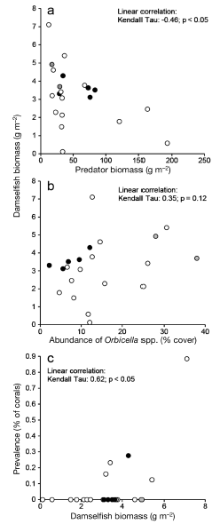Figure 3: a) Negative correlation between predatory fish abundance and the local abundance of the three-spot damselfish. b) Lack of correlation between abundance of preferred habitat and that of three-spot damselfish. c) Positive correlation between damselfish biomass and the prevalence of diseased corals. Note: significant correlations were those with p<0.05 based on the statistical tests.