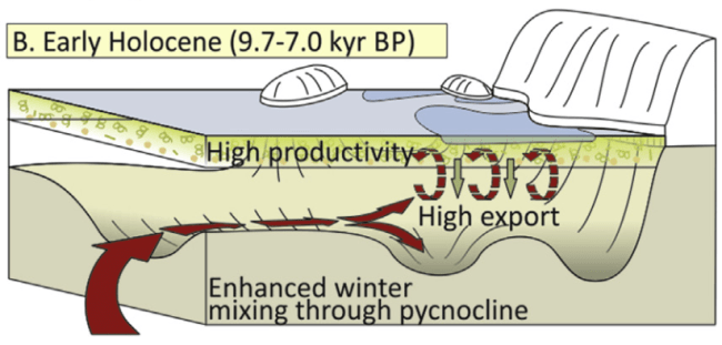 Figure 4. Sediment core records suggest that this is what Marguerite Trough looked like between 10,000 and 7,000 years ago. Red arrows indicate nutrient-rich Warm Deep Water making its way onto the continental shelf and mixing up into the surface water where it fuels primary production. The surface ocean is relatively ice-free due to the warm ocean water and the high production leads to high export of organic matter to depth. (Fig. 6B in paper.)