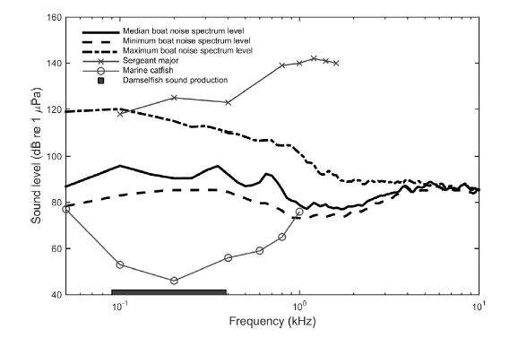 Fig. 5: The thicker lines show median, minimum and maximum levels of boat noise detected. The thinner lines show the hearing thresholds for the sergeant major (a generalist), the marine catfish (a specialist), and the frequency range in which damselfish produce sound. As you can see, boat noise overlaps the frequency of many of these natural sounds and exists at a sound level that may overwhelm those noises in the environment.