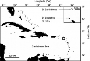 Fig. 1. Location of St. Eustatius in the Lesser Antilles in the north-eastern Caribbean. The study site, Zeelandia beach, is located on the eastern coast of St. Eustatius.