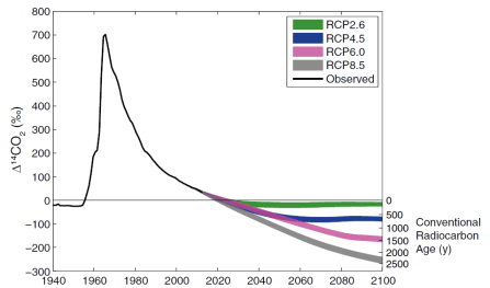 "Historical and projected radiocarbon content of the atmosphere. 14C spiked around 1960 due to nuclear weapons testing, and has been drifting back toward the baseline as the excess 14C works its way into the ocean, plants, and soils. The trajectory of radiocarbon content for the rest of the century depends on fossil fuel emission scenarios (Representative Concentration Pathways; RCPs). With aggressive action to limit CO2 emissions, atmospheric radiocarbon will only ""age"" by a hundred years or so (green line) but under ""business as usual"" policy, it will be appear over 2000 years old by 2100 (grey line), severely limiting the dating of younger materials. From Graves 2015."