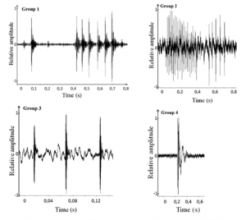 Fig. 4: Examples of the audio/sound groupings the fish were categorized by. These graphs show sound by time and amplitude.