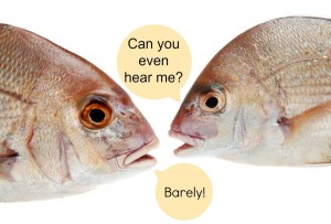 FIg. 7: With noises from human entering the water, it is getting hard for fish to be heard!