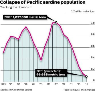 Figure 1: Collapse of Pacific Sardine population. This data was published last year, with stocks down 93% since 2007. For 2016, a draft projection by NOAA puts the stocks down a total of 97% since 2007. Credit: NOAA Fisheries Service.