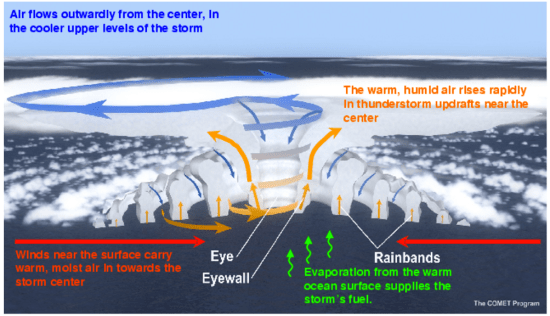 The anatomy of a hurricane (www.gfdl.noaa.gov)