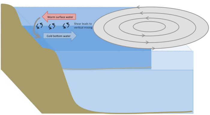 Figure 5. Sketch of a hurricane traveling along the east coast. Winds at the leading edge blow toward the coast, pushing surface currents toward the coast and setting up a down-welling circulation. The resulting shear leads to mixing.