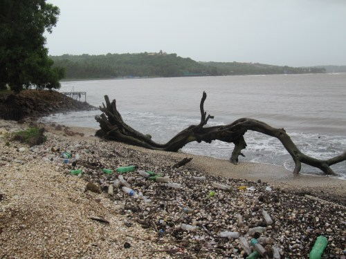 Plastic on the shore eventually slips into the ocean. The extent of the damage cause by plastic pollution is unknown.
