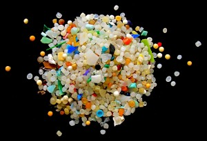 Fig. 2: Microplastics are tiny (Photo: Stephanie Wright).
