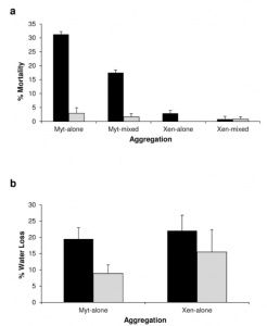 Fig. 1: Percentage mortality (a.) and water loss (b.) of single and mixed-species mussel aggregations. Black bars indicate mortality or water loss during a heat wave; grey bars reflect results from non-heat wave control trials. Taken from Olabarria et al. (2016) Fig. 2.