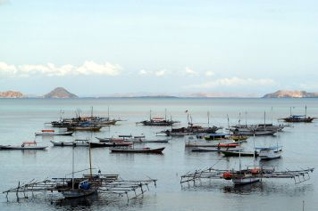 Fishing boats in Labuanbajo, Flores, Indonesia. (Credit: Rosino/Flickr)