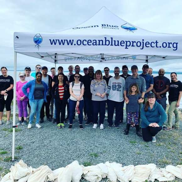 Ocean blue volunteers