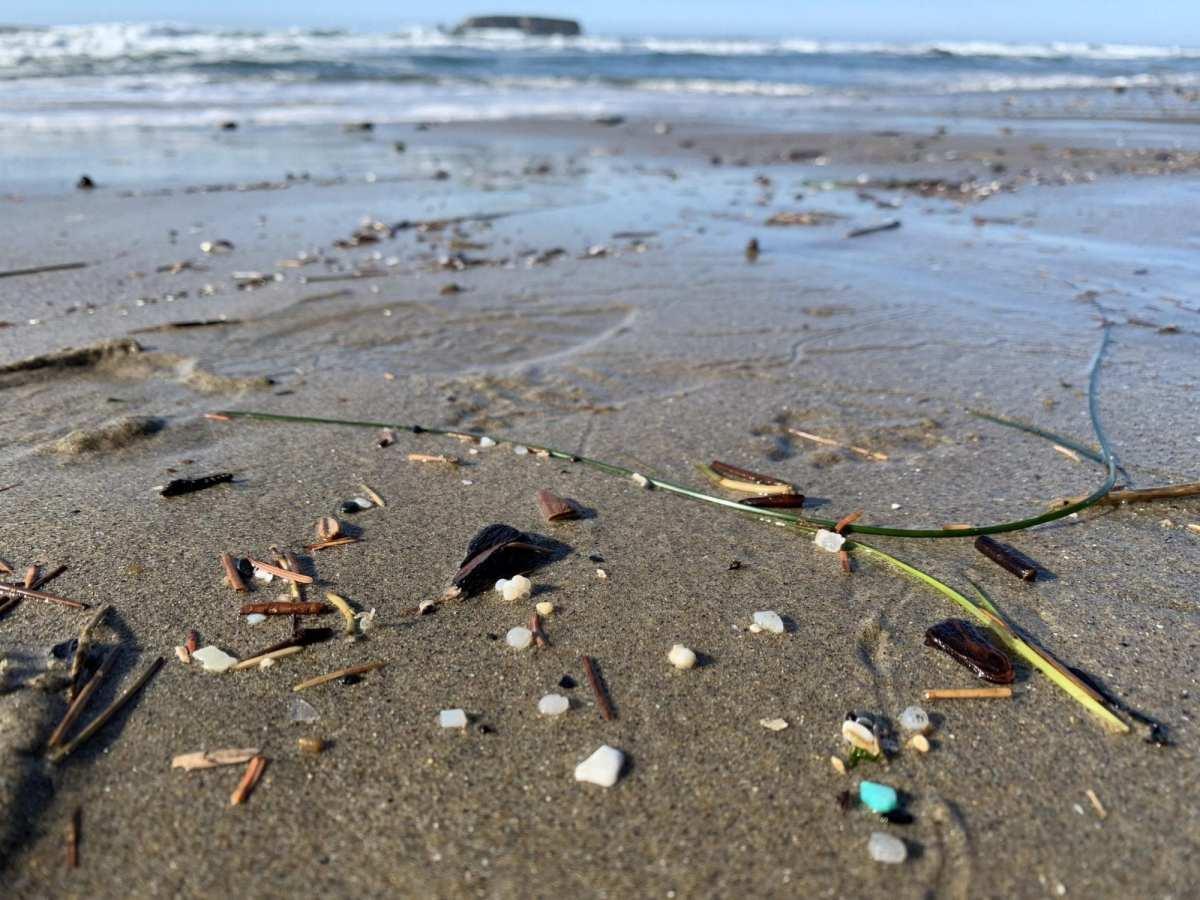 nurdles-agate-beach-newport-Oregon-Beach-Plastic